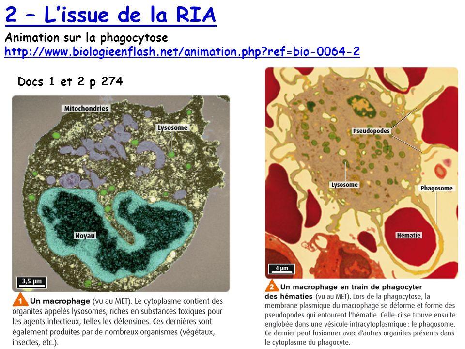 Docs 1 et 2 p 274 Animation sur la phagocytose http://www.biologieenflash.net/animation.php?ref=bio-0064-2 http://www.biologieenflash.net/animation.ph