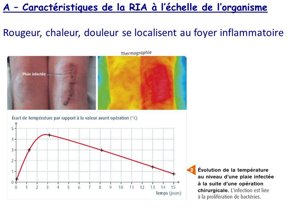 doc 4 p 269 Linfiltration de plasma sanguin explique le gonflement, la rougeur, la chaleur et la désorganisation de la structure derme/épiderme On observe également la présence de cellules du système immunitaire chez lindividu contaminé (ex.