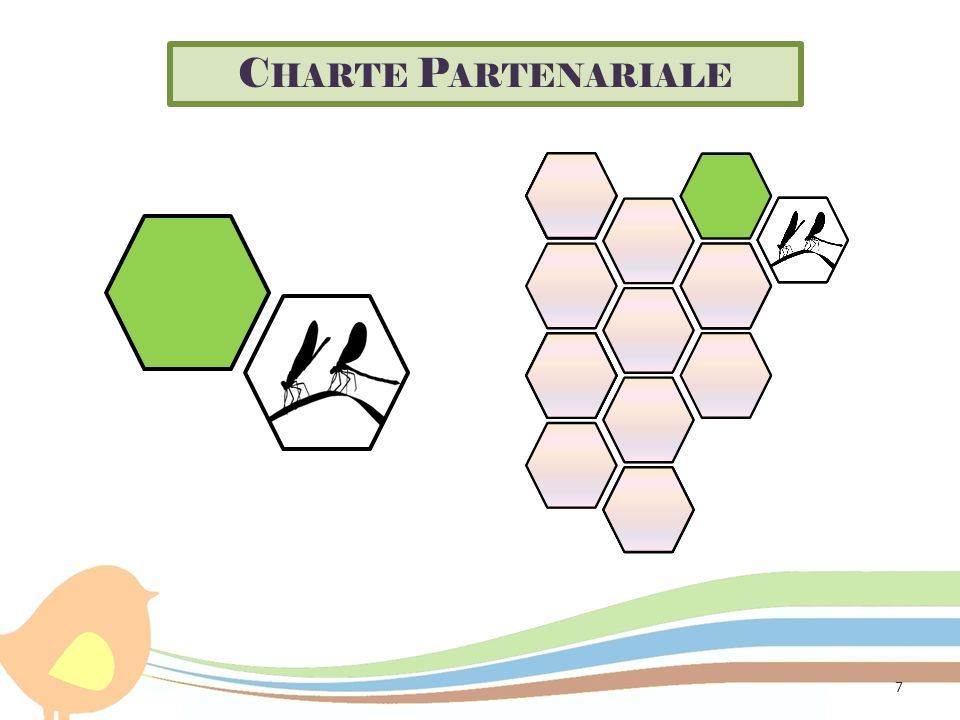 C HARTE P ARTENARIALE 7