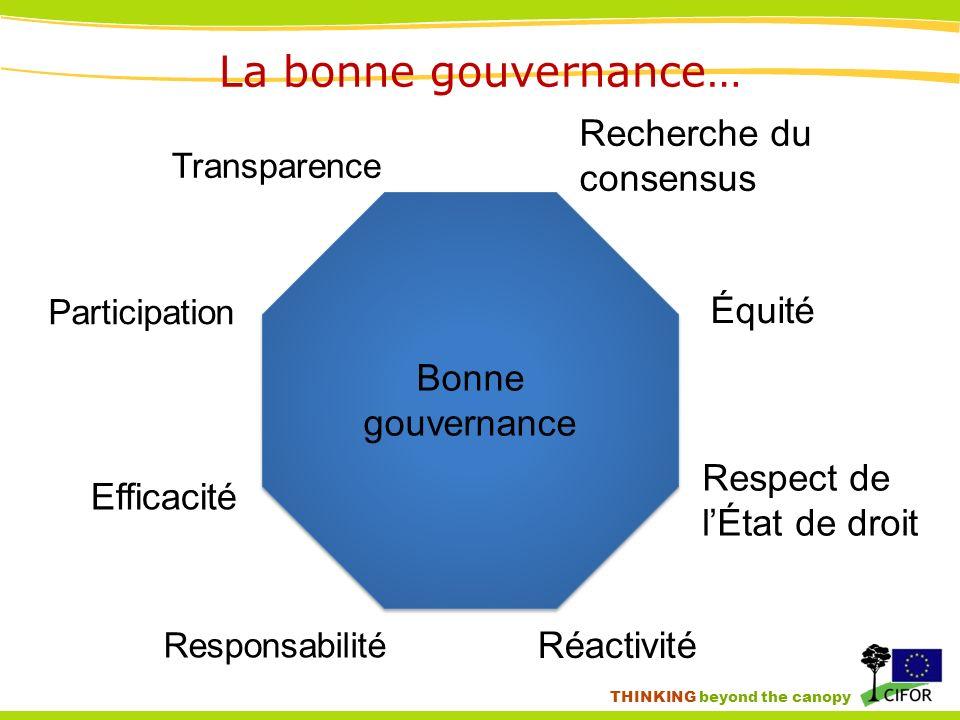 THINKING beyond the canopy La bonne gouvernance… Transparence Participation Responsabilité Équité Recherche du consensus Réactivité Efficacité Respect de lÉtat de droit Bonne gouvernance