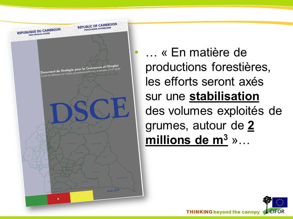 THINKING beyond the canopy … « En matière de productions forestières, les efforts seront axés sur une stabilisation des volumes exploités de grumes, autour de 2 millions de m 3 »…