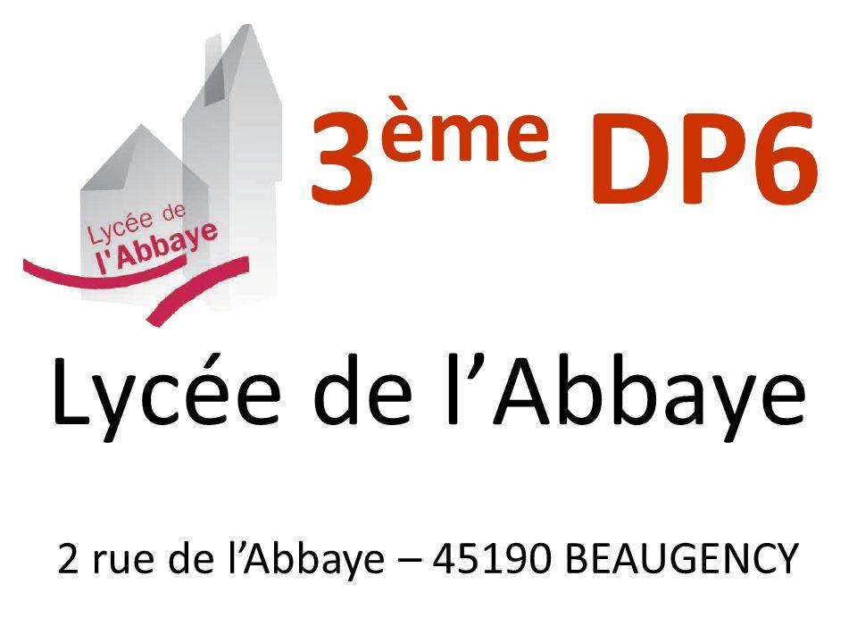 3 ème DP6 Lycée de lAbbaye 2 rue de lAbbaye – 45190 BEAUGENCY