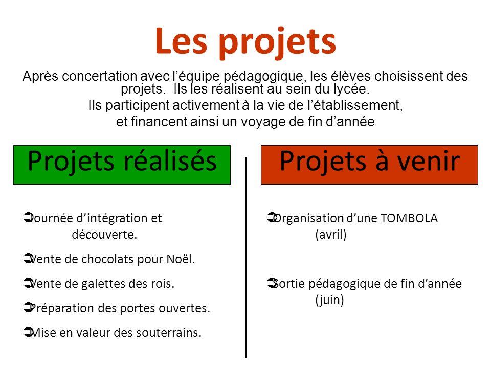 Les projets Après concertation avec léquipe pédagogique, les élèves choisissent des projets. Ils les réalisent au sein du lycée. Ils participent activ