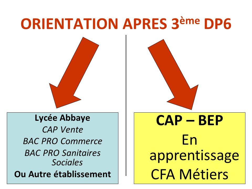 ORIENTATION APRES 3 ème DP6 Lycée Abbaye CAP Vente BAC PRO Commerce BAC PRO Sanitaires Sociales Ou Autre établissement CAP – BEP En apprentissage CFA