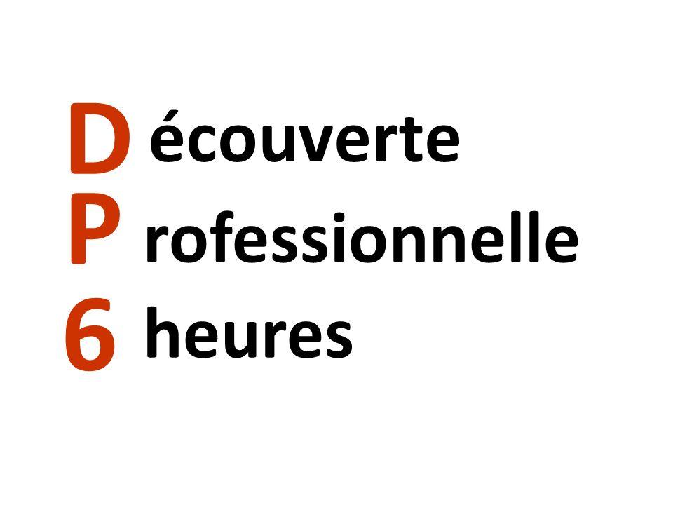 La 3 ème DP6, cest quoi.Cette classe est basée sur la découverte du monde professionnel.