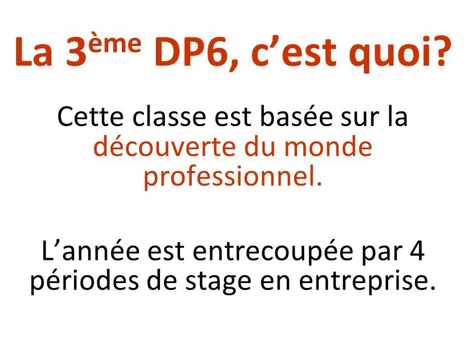 La 3 ème DP6, cest quoi? Cette classe est basée sur la découverte du monde professionnel. Lannée est entrecoupée par 4 périodes de stage en entreprise