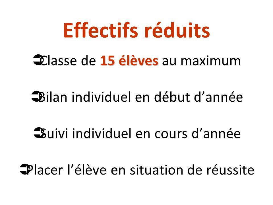 Effectifs réduits 15 élèves Classe de 15 élèves au maximum Bilan individuel en début dannée Suivi individuel en cours dannée Placer lélève en situatio