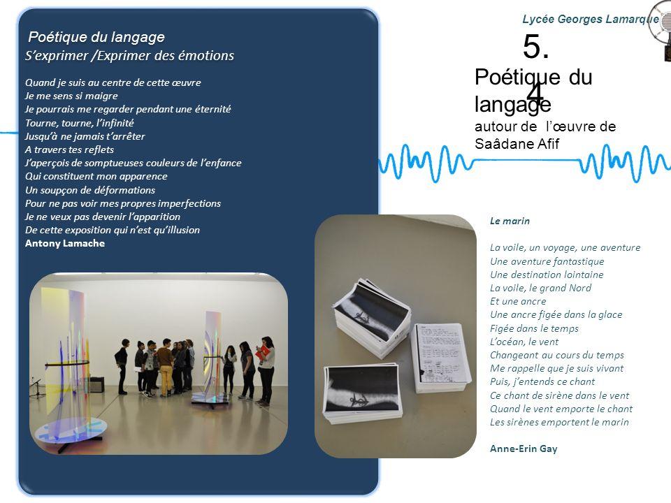 Poétique du langage autour de lœuvre de Saâdane Afif Lycée Georges Lamarque Poétique du langage Sexprimer /Exprimer des émotions Poétique du langage S