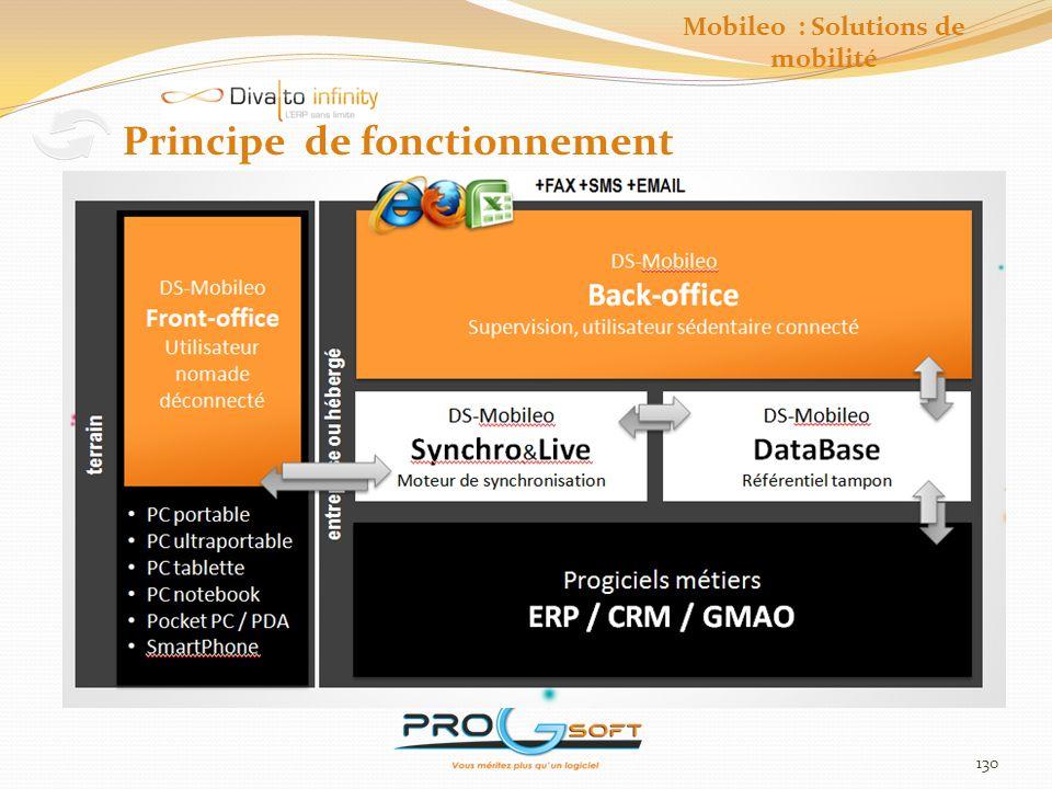 131 Fonctionnalités générales Mobileo : Solutions de mobilité