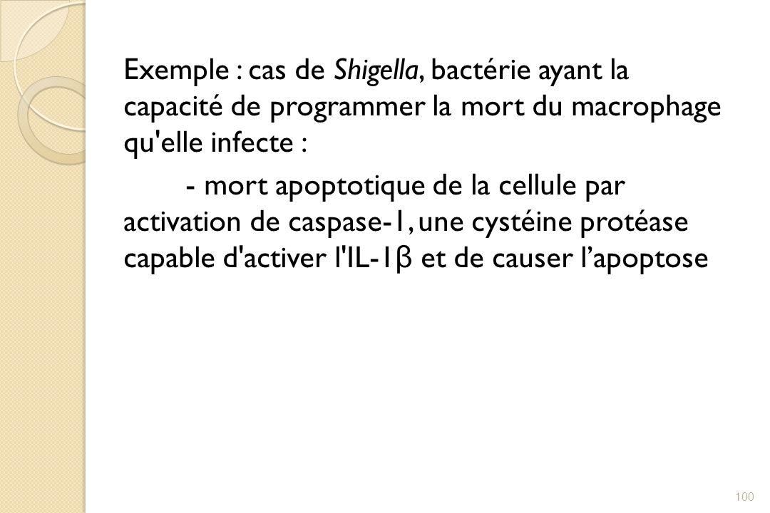 Exemple : cas de Shigella, bactérie ayant la capacité de programmer la mort du macrophage qu'elle infecte : - mort apoptotique de la cellule par activ