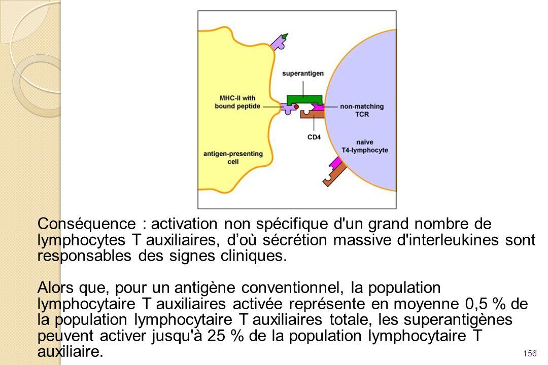 156 Conséquence : activation non spécifique d'un grand nombre de lymphocytes T auxiliaires, doù sécrétion massive d'interleukines sont responsables de