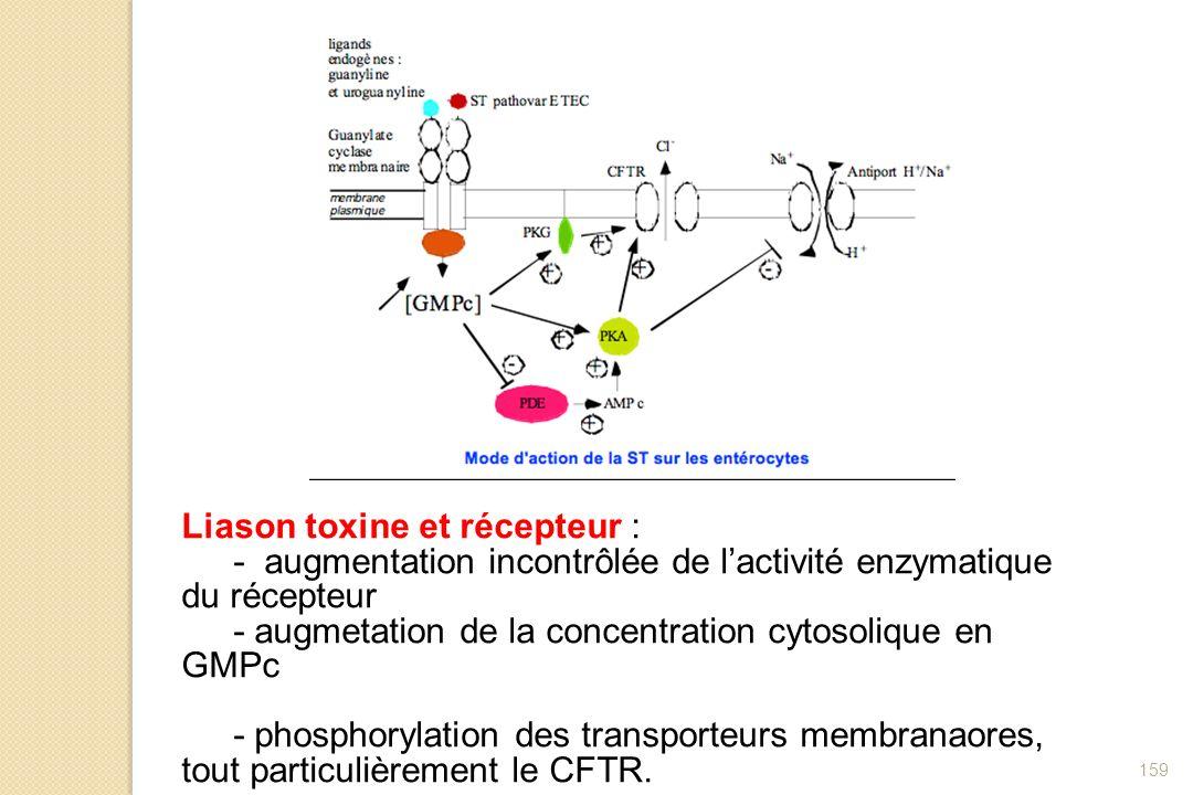 159 Liason toxine et récepteur : - augmentation incontrôlée de lactivité enzymatique du récepteur - augmetation de la concentration cytosolique en GMP