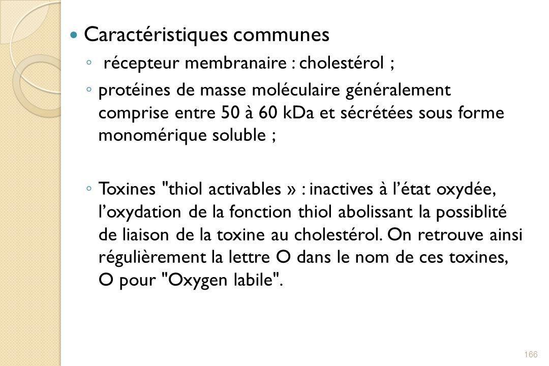Caractéristiques communes récepteur membranaire : cholestérol ; protéines de masse moléculaire généralement comprise entre 50 à 60 kDa et sécrétées so