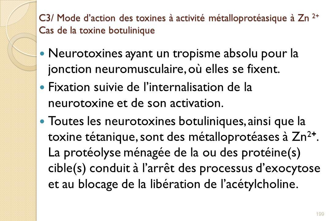 C3/ Mode daction des toxines à activité métalloprotéasique à Zn 2+ Cas de la toxine botulinique Neurotoxines ayant un tropisme absolu pour la jonction