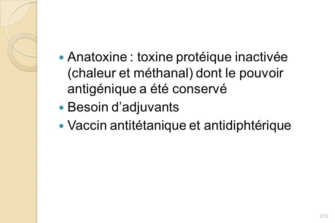 Anatoxine : toxine protéique inactivée (chaleur et méthanal) dont le pouvoir antigénique a été conservé Besoin dadjuvants Vaccin antitétanique et anti