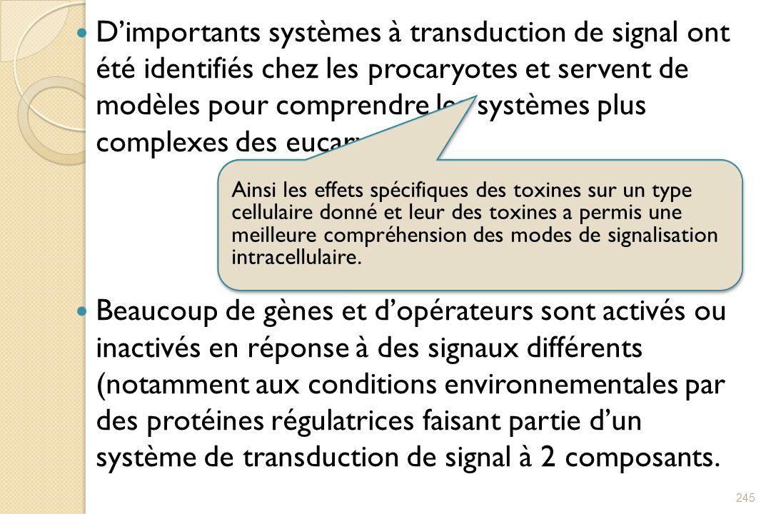 Dimportants systèmes à transduction de signal ont été identifiés chez les procaryotes et servent de modèles pour comprendre les systèmes plus complexe