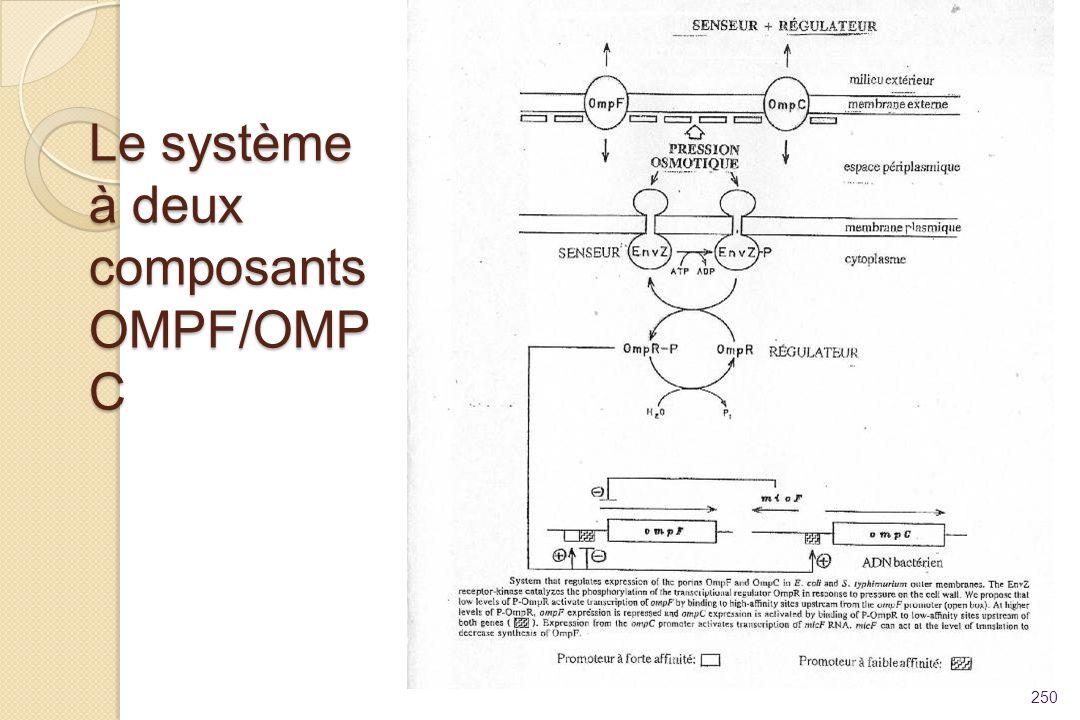 Le système à deux composants OMPF/OMP C 250