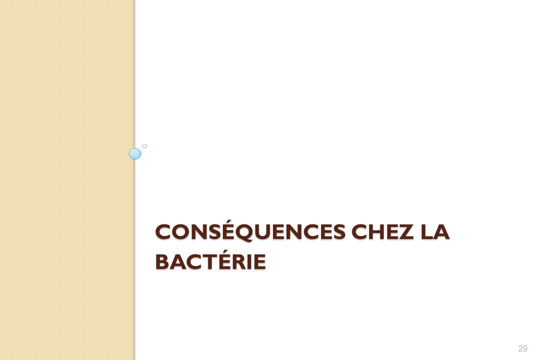 CONSÉQUENCES CHEZ LA BACTÉRIE 29