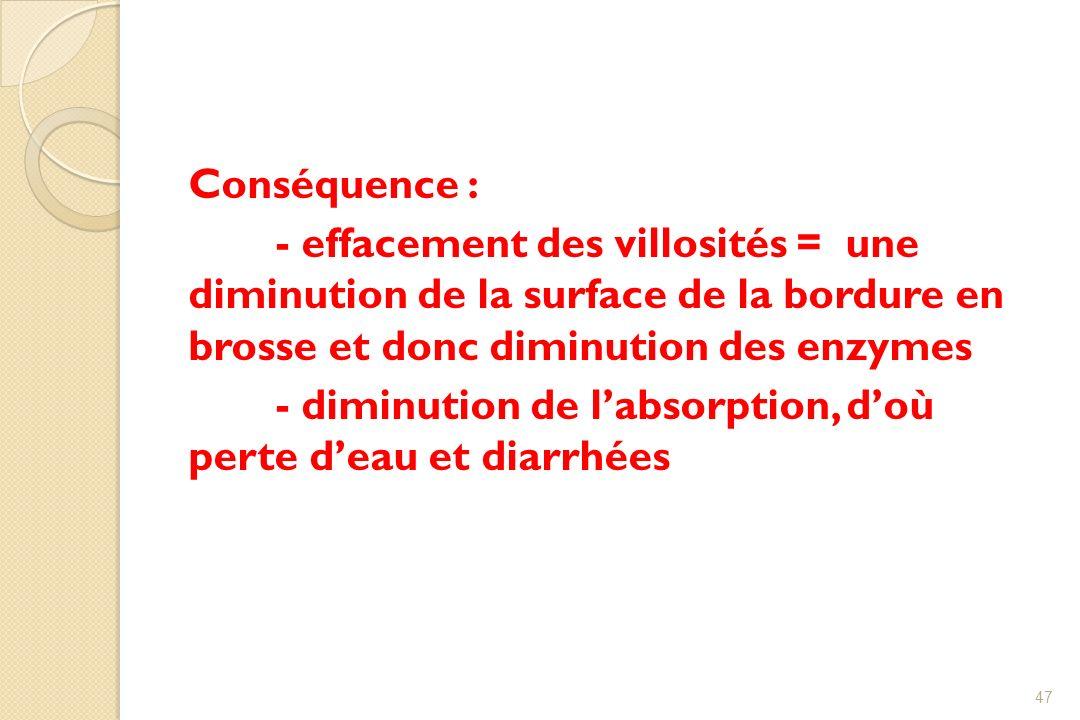 Conséquence : - effacement des villosités = une diminution de la surface de la bordure en brosse et donc diminution des enzymes - diminution de labsor
