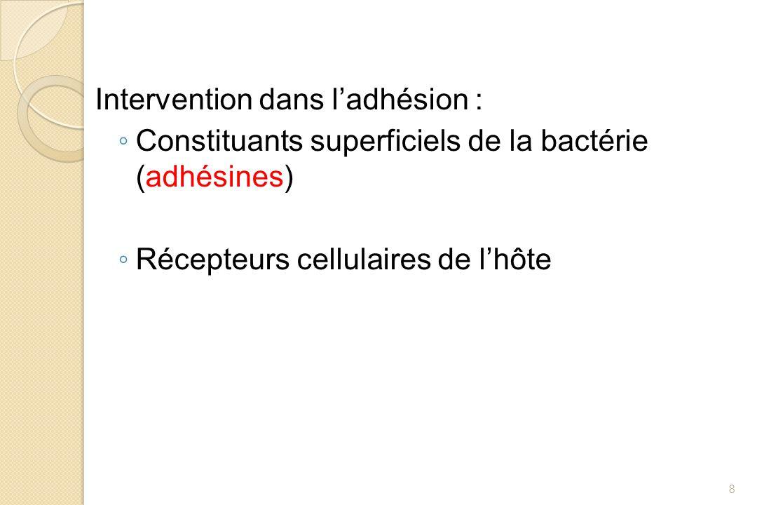 Intervention dans ladhésion : Constituants superficiels de la bactérie (adhésines) Récepteurs cellulaires de lhôte 8