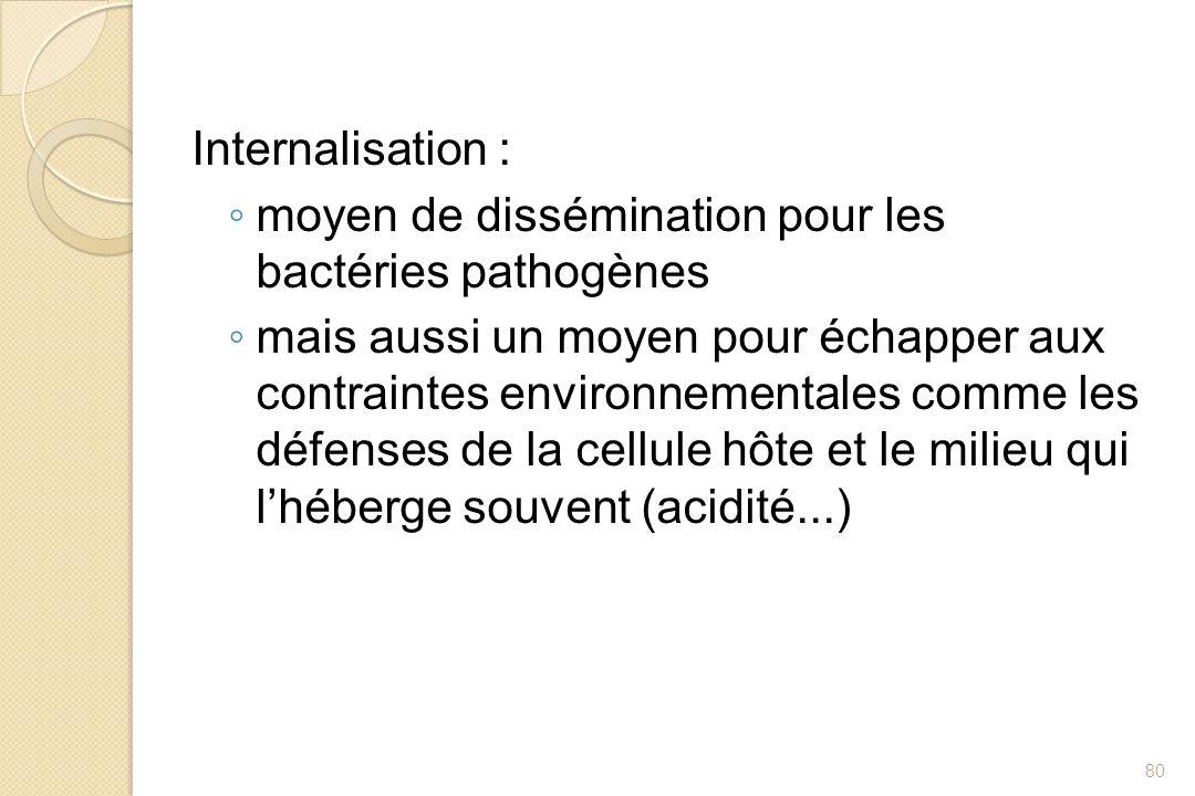 Internalisation : moyen de dissémination pour les bactéries pathogènes mais aussi un moyen pour échapper aux contraintes environnementales comme les d