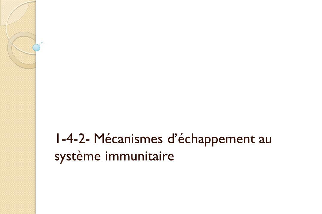 1-4-2- Mécanismes déchappement au système immunitaire