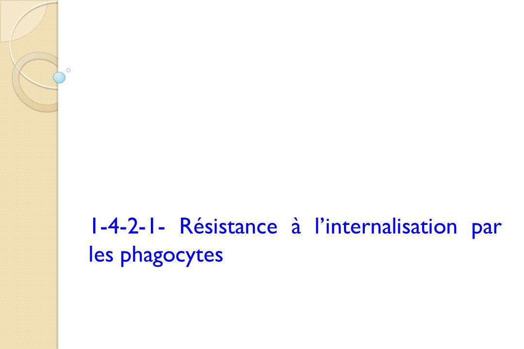 1-4-2-1- Résistance à linternalisation par les phagocytes