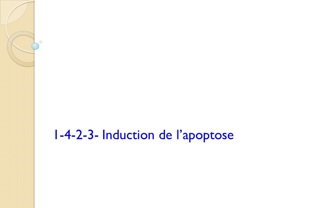 1-4-2-3- Induction de lapoptose