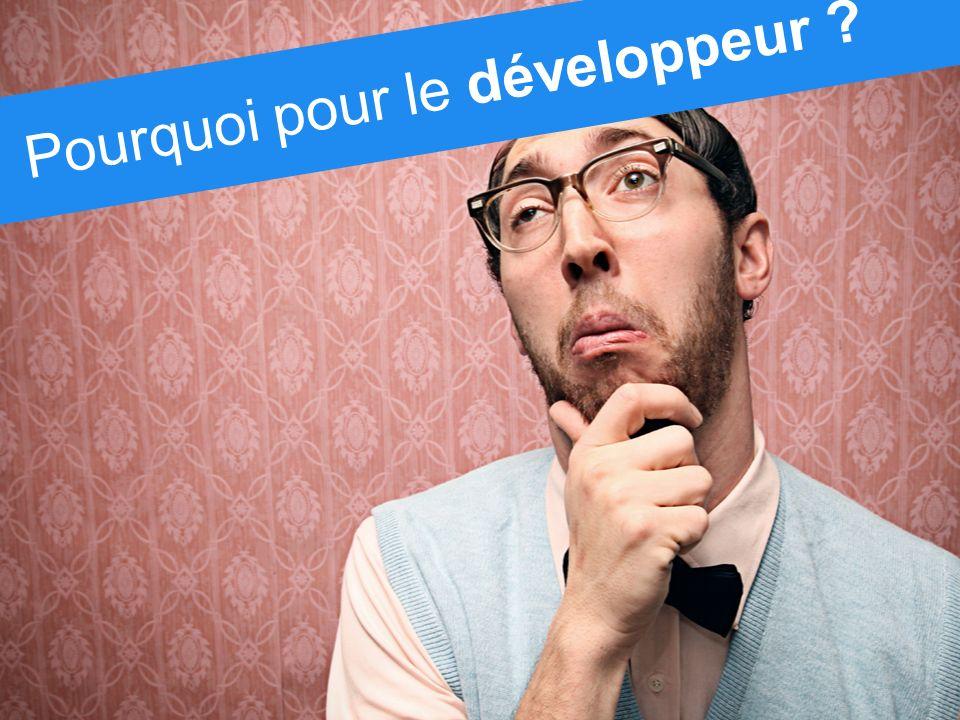 Pourquoi pour le développeur ?