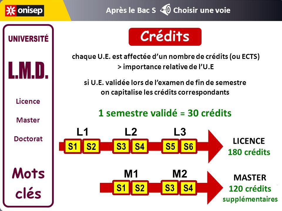 Licence Master Doctorat Mots clés chaque semestre constitué dU.E une U.E.