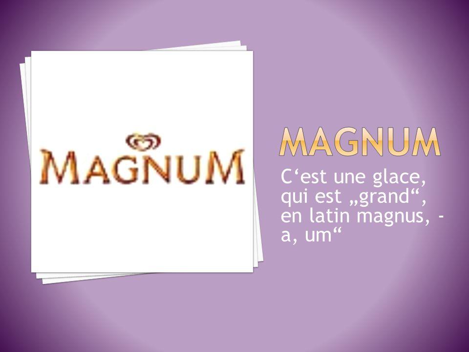 Cest une glace, qui est grand, en latin magnus, - a, um