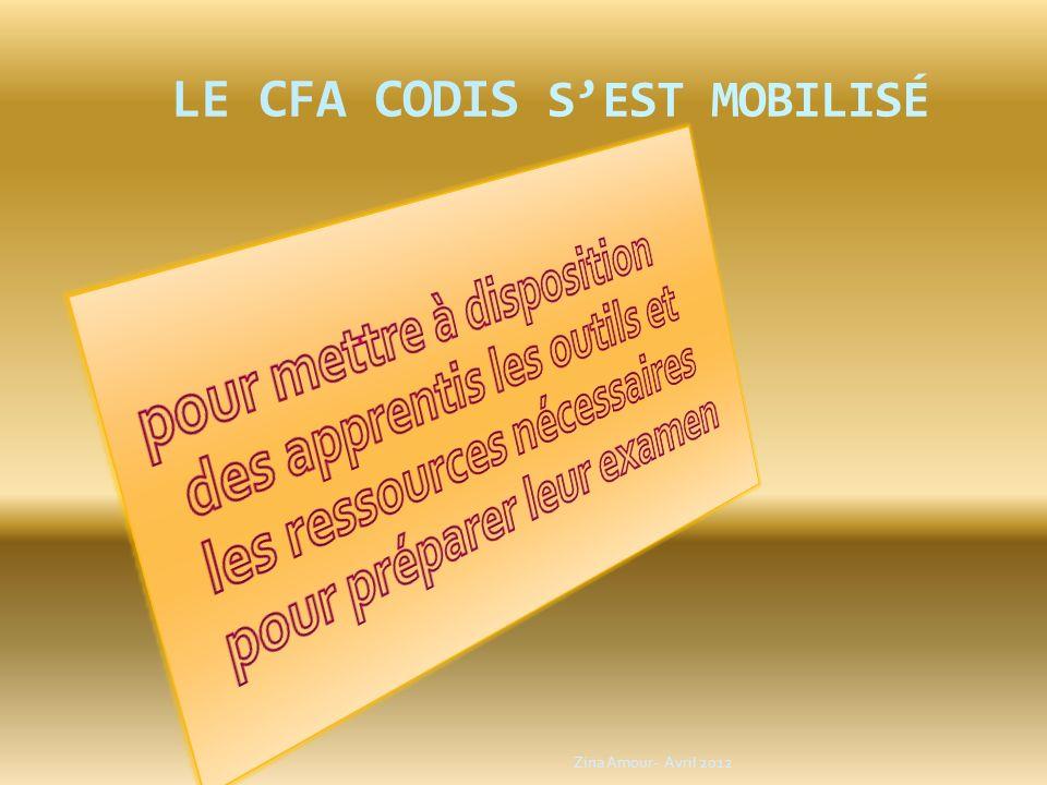 LE CFA CODIS SEST MOBILISÉ Zina Amour- Avril 2012