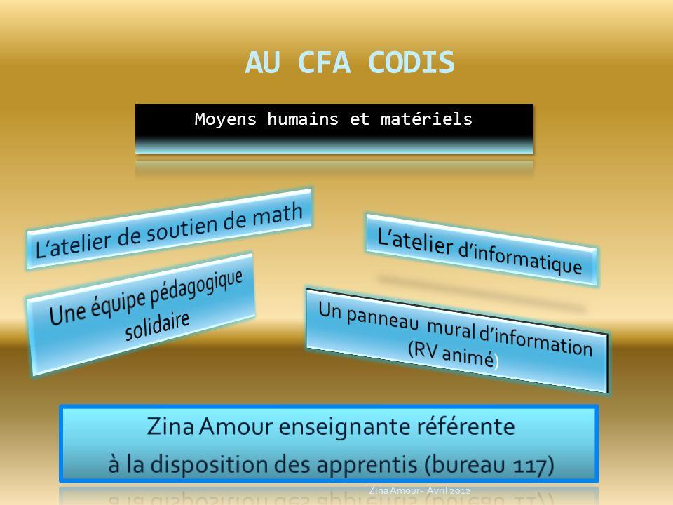 AU CFA CODIS Zina Amour- Avril 2012
