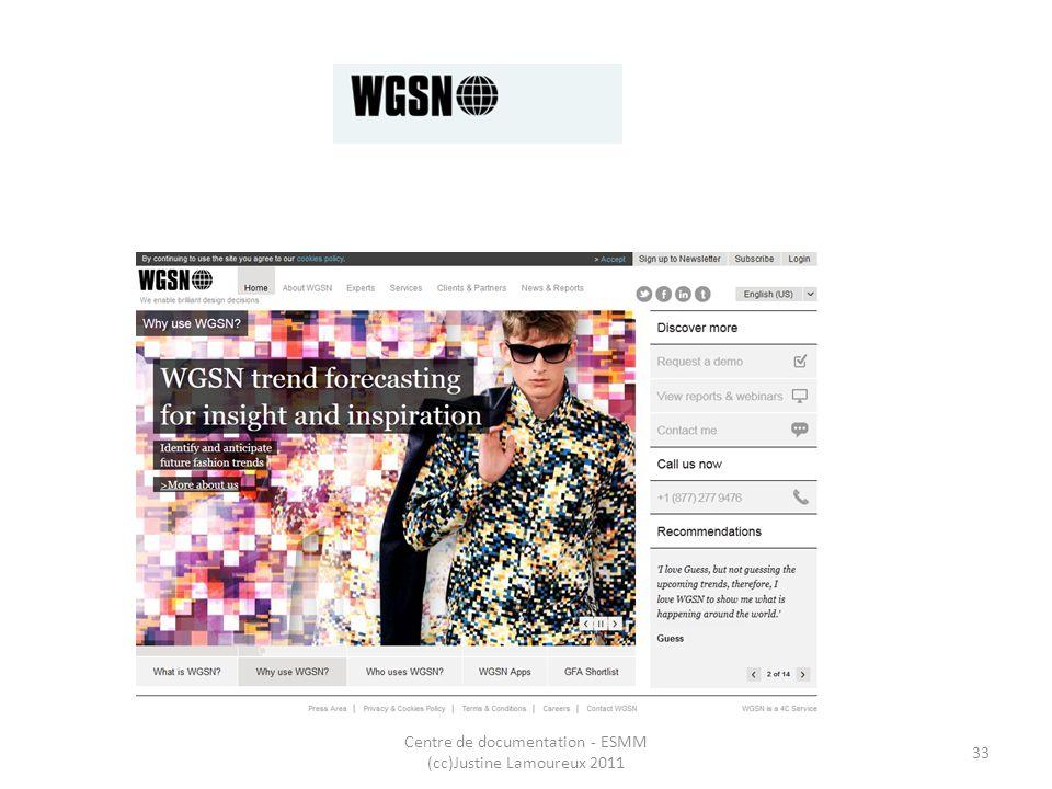 WGSN Centre de documentation - ESMM (cc)Justine Lamoureux 2011 33