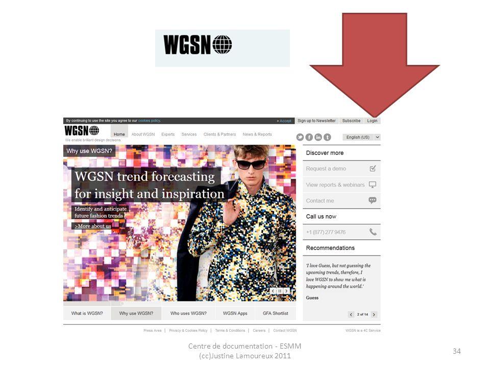 WGSN Centre de documentation - ESMM (cc)Justine Lamoureux 2011 34