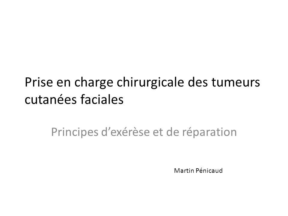 Prise en charge chirurgicale des tumeurs cutanées faciales Principes dexérèse et de réparation Martin Pénicaud