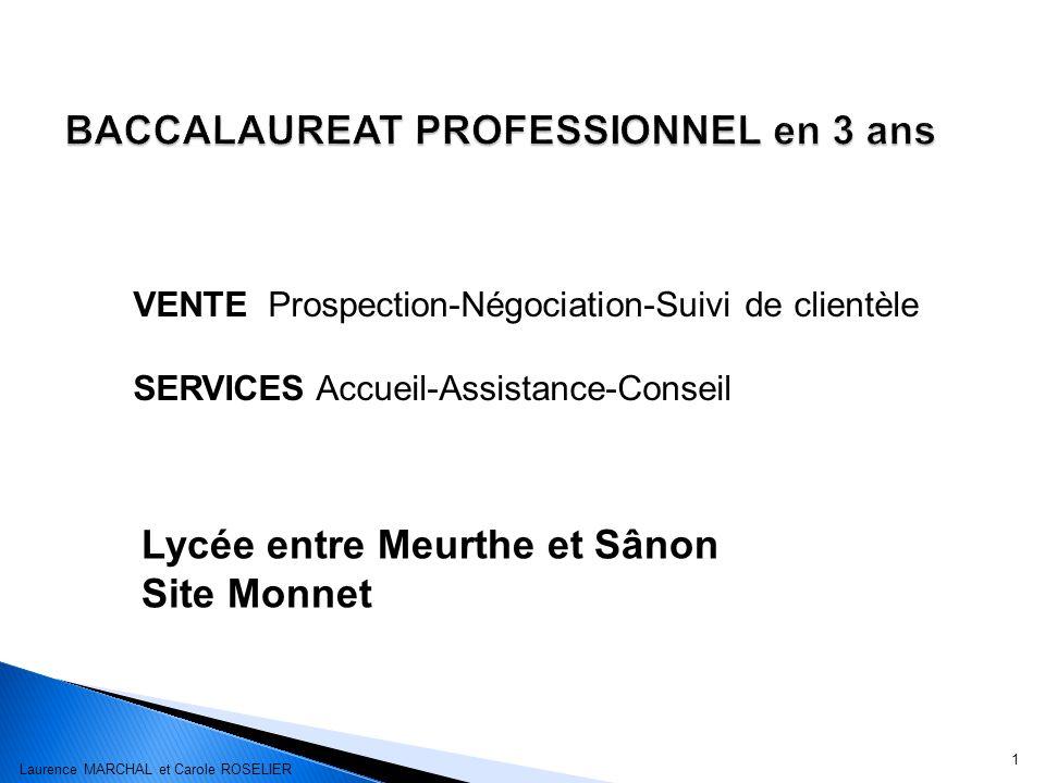 1 Lycée entre Meurthe et Sânon Site Monnet VENTE Prospection-Négociation-Suivi de clientèle SERVICES Accueil-Assistance-Conseil Laurence MARCHAL et Ca