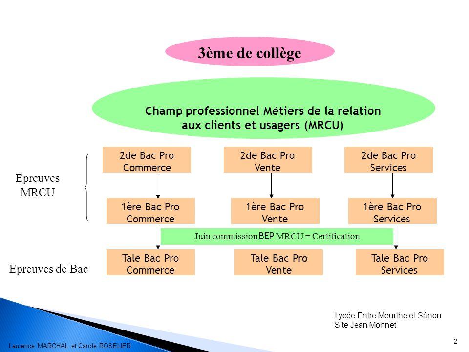 2 Lycée Entre Meurthe et Sânon Site Jean Monnet 3ème de collège Champ professionnel Métiers de la relation aux clients et usagers (MRCU) 2de Bac Pro S