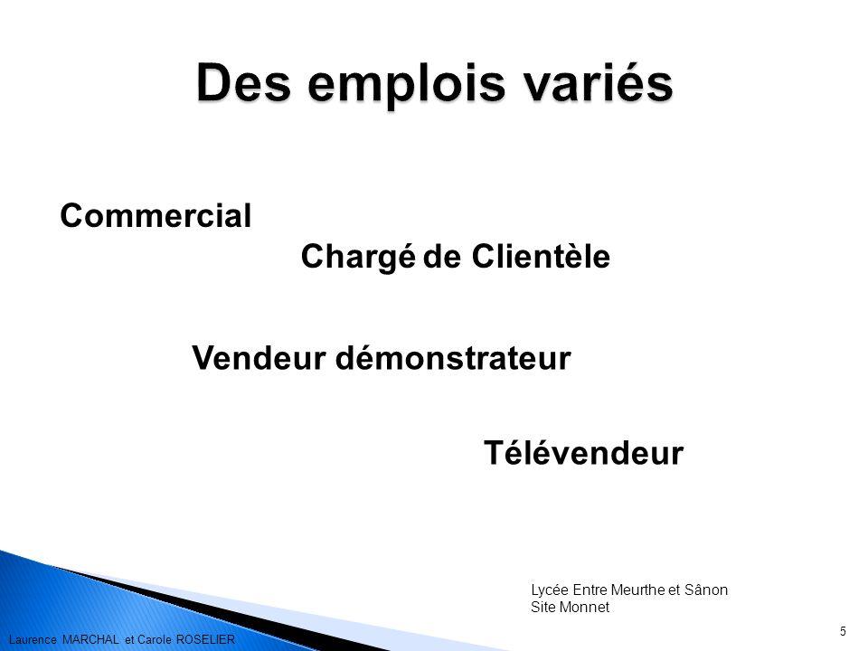 Commercial 5 Vendeur démonstrateur Télévendeur Lycée Entre Meurthe et Sânon Site Monnet Chargé de Clientèle Laurence MARCHAL et Carole ROSELIER