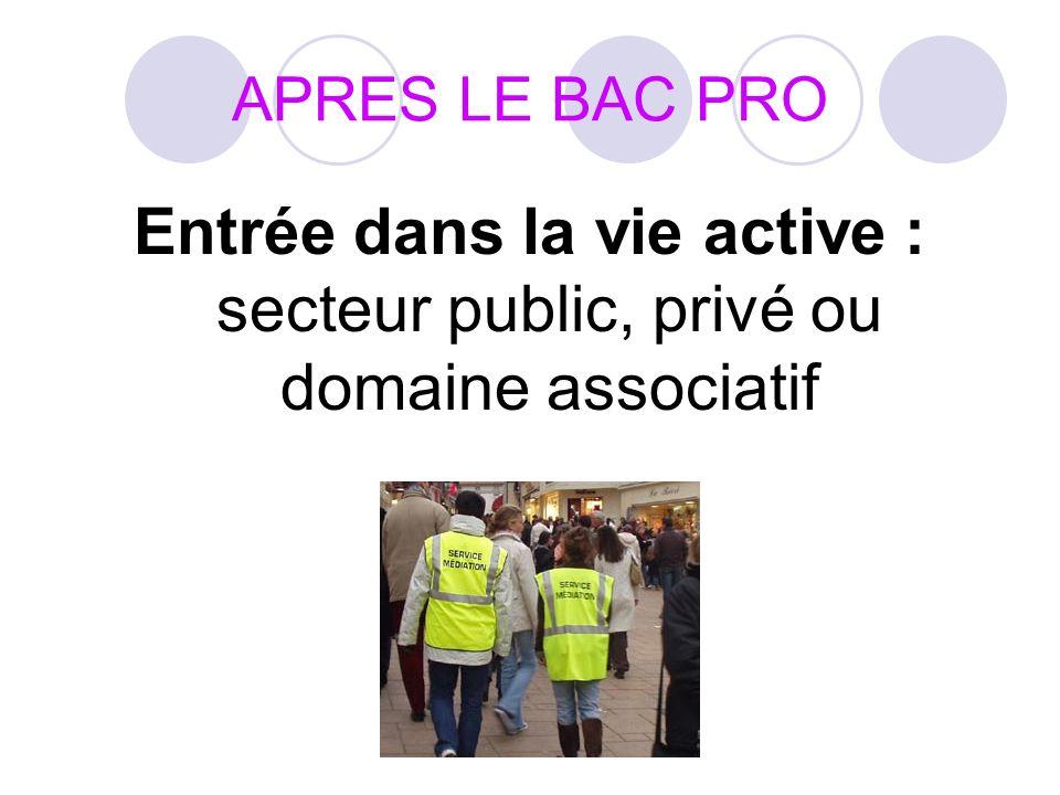 APRES LE BAC PRO Entrée dans la vie active : secteur public, privé ou domaine associatif