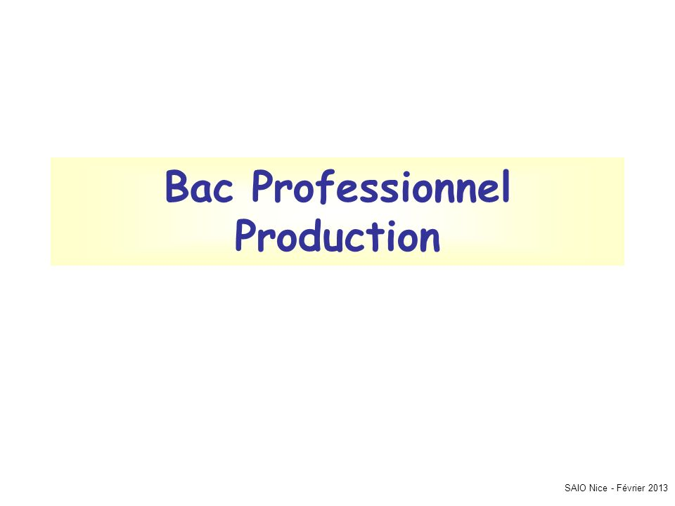SAIO Nice - Février 2013 Bac Professionnel Production