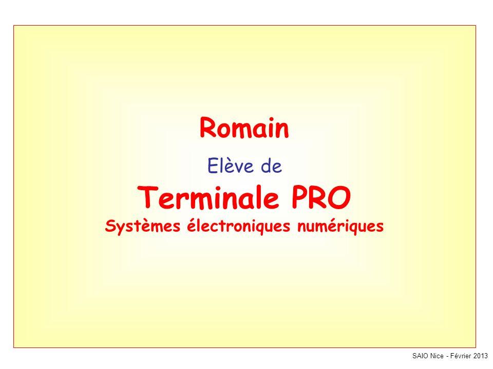 SAIO Nice - Février 2013 Romain Elève de Terminale PRO Systèmes électroniques numériques