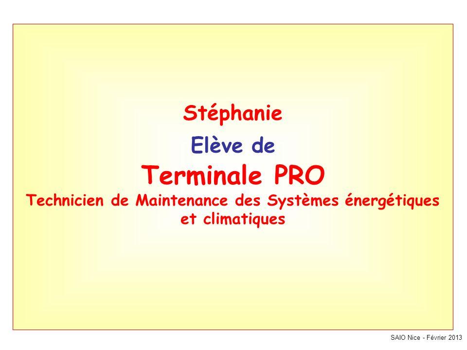 SAIO Nice - Février 2013 Stéphanie Elève de Terminale PRO Technicien de Maintenance des Systèmes énergétiques et climatiques