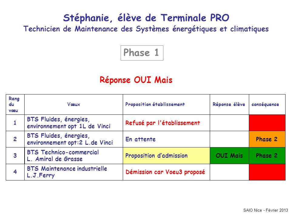 SAIO Nice - Février 2013 Stéphanie, élève de Terminale PRO Technicien de Maintenance des Systèmes énergétiques et climatiques Phase 2 Démission car Vo