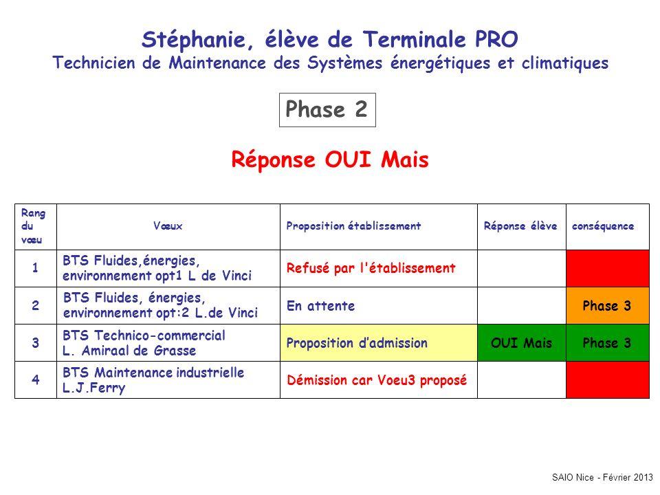 SAIO Nice - Février 2013 Stéphanie, élève de Terminale PRO Technicien de Maintenance des Systèmes énergétiques et climatiques Phase 3 Démission car Vo
