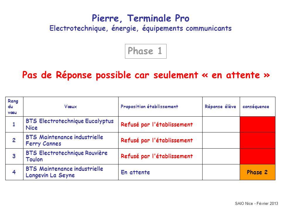 SAIO Nice - Février 2013 Pierre, Terminale Pro Electrotechnique, énergie, équipements communicants Phase 2En attente BTS Maintenance industrielle Lang