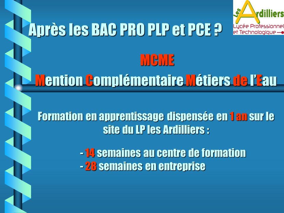Après les BAC PRO PLP et PCE ? MCME Mention Mention Complémentaire Complémentaire Métiers Métiers de lEau Formation en apprentissage dispensée en 1 an