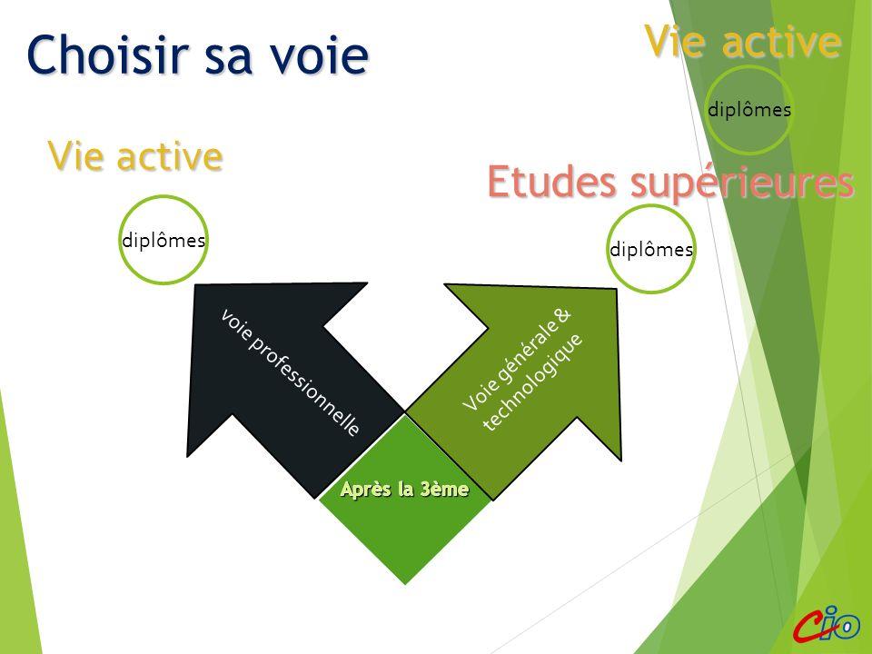 Démarches spécifiques ABIBAC (Lycée Jean Monnet) Sections sportives 2 nde création et culture design (bac STD2A) (Lycée Le Corbusier) 2 nde spécifique hôtellerie (Lycée Alexandre Dumas) Lycée agricole 2 ndes expérimentales Sections internationales lycée des Pontonniers