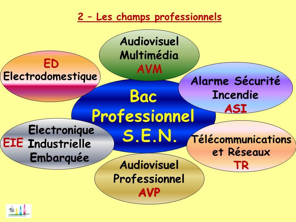 2 – Les champs professionnels Bac Professionnel S.E.N. Télécommunications et Réseaux TR EIE Electrodomestique ED