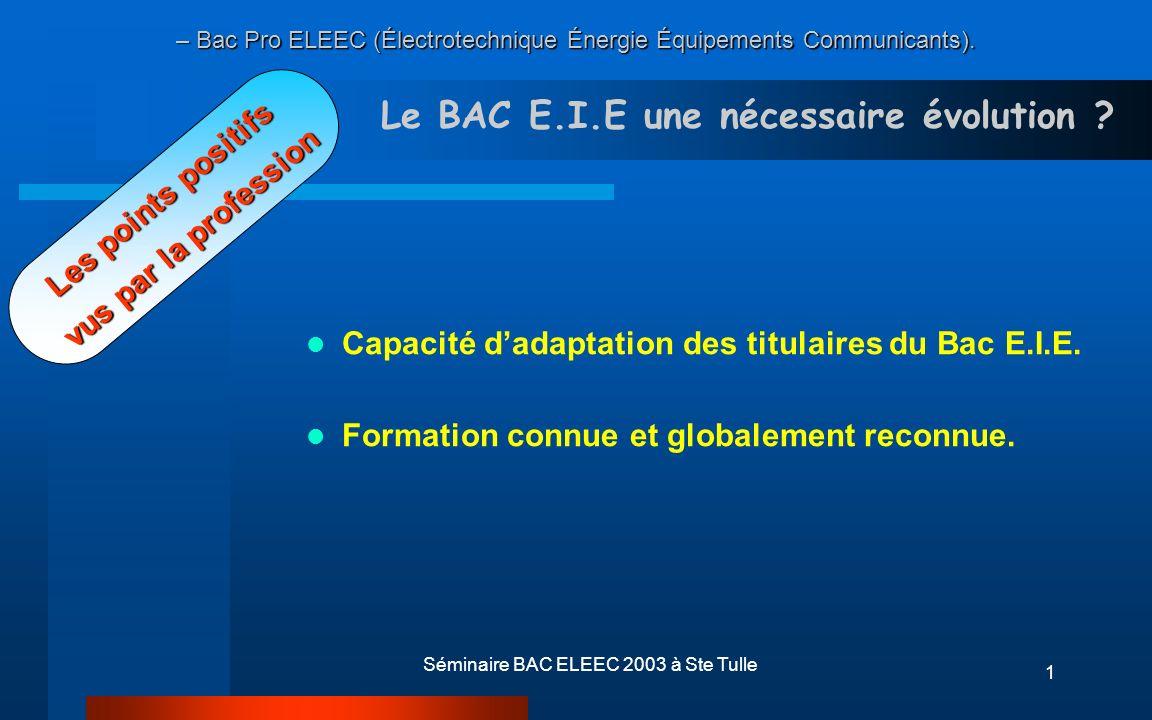 Séminaire BAC ELEEC 2003 à Ste Tulle12 LE BACCALAUREAT PROFESSIONNEL Le Référentiel des Activités Professionnelles ELEEC
